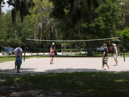 Grown ups playing volleyball